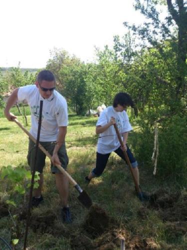 2013 - Vállalati Önkéntesek Napja, Kerepes - Önkéntesek munkában